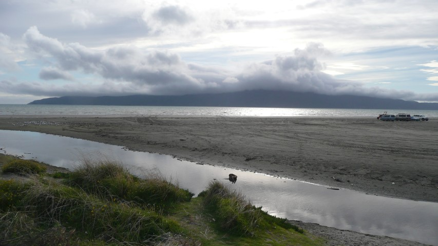 new_zealand_northisland_kapiti_island.JPG