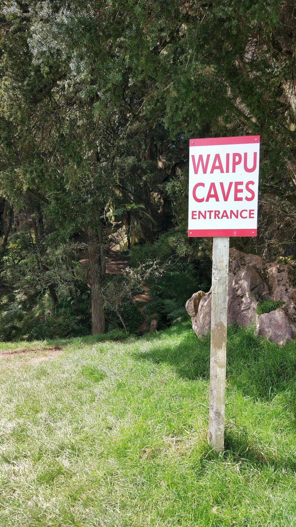 20170910_Northland_Whangarei_Waipu_Cave_glowworms_entrance.jpeg