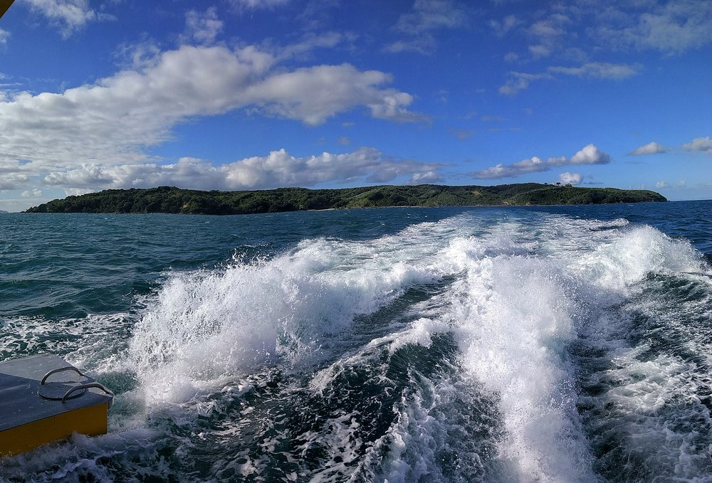 Bye bye Tiritiri Matangi Island