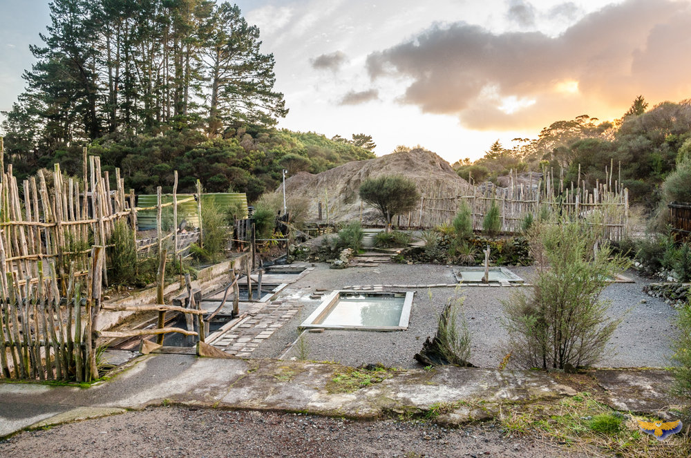 Basic but lovely hot pools at Ngawha Springs, Bay of Islands. Photo by Bernhard Huber