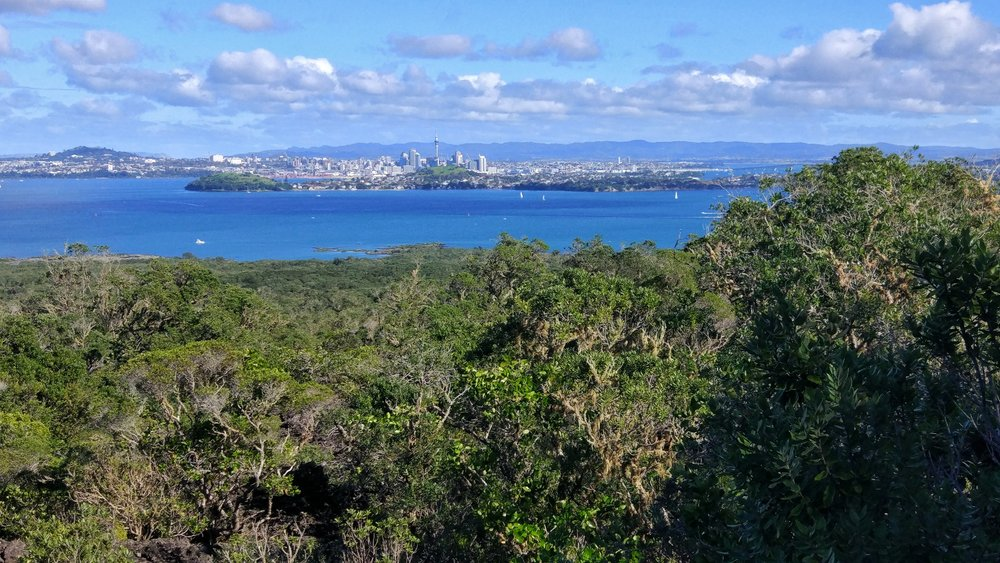 Devonport and Auckland city seen from Rangitoto summit