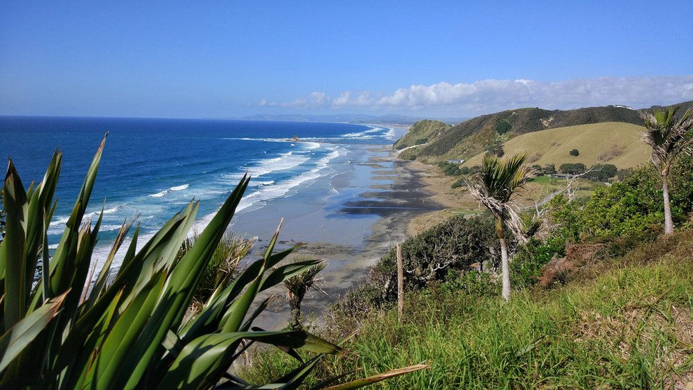What a view! From the top of the Mangawhai Cliff Walk