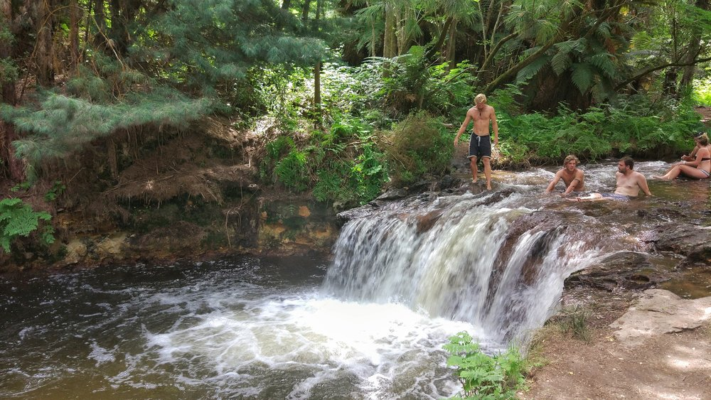 Free hot springs at Kerosene Creek