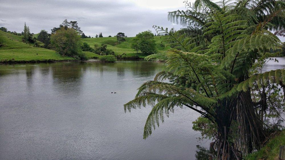 Lake at McLaren falls park