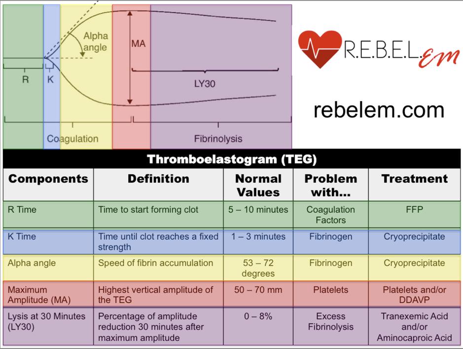 REZAIE, S. REBEL REVIEW #54 THROMBOELASTOGRAM (TEG). HTTP://REBELEM.COM/REBEL-REVIEWS/