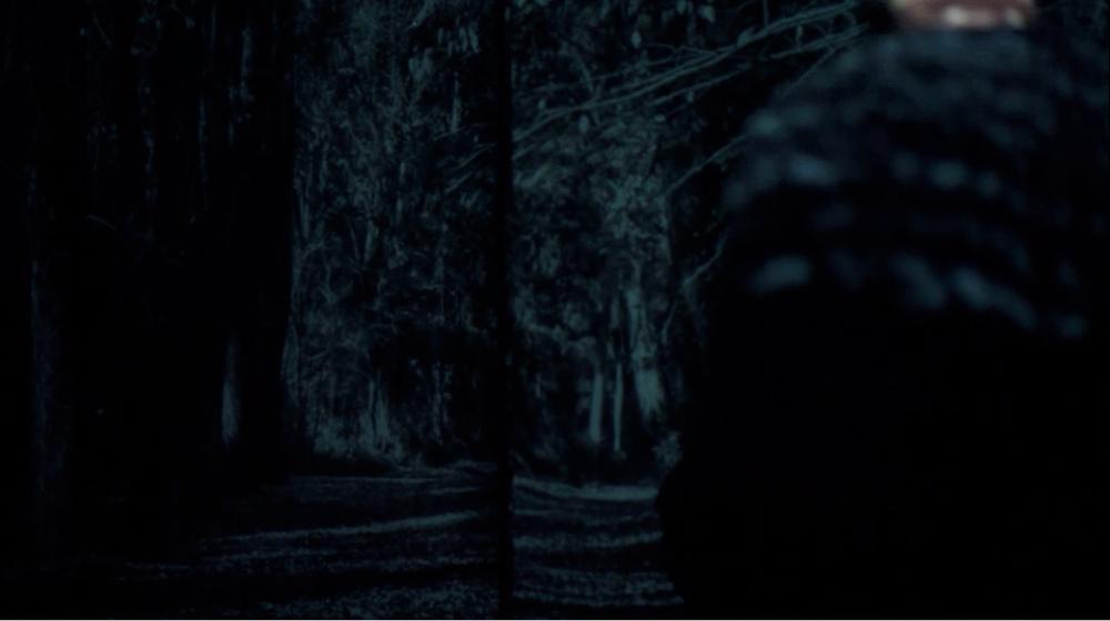 Whisper entrance_Pam davison projection.png