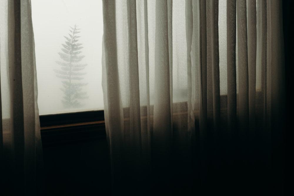 photo-131.jpg