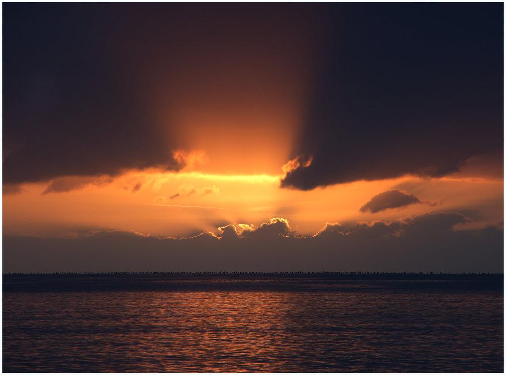 Morning Rays.jpg