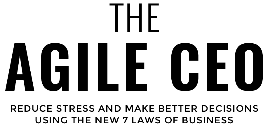 The Agile CEO Header Title Black Book Page_preview.png