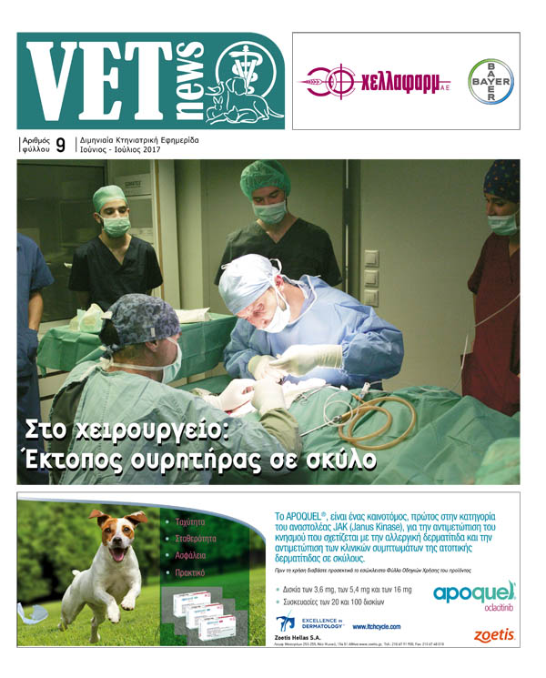 Vet News - It is a bimonthly veterinary leaflet distributed free of charge to the country's veterinarians, whether these concern productive or pet animals. The Vet News was created with a view to the evolution of veterinary medicine. It is addressed to the Greek Veterinarian and is intended to cover every possible need for communication and information about the specific industry.It publishes veterinary news, scientific articles, as well as everything else that takes place during the year, always aiming at the evolution and briefing of the practitioner.