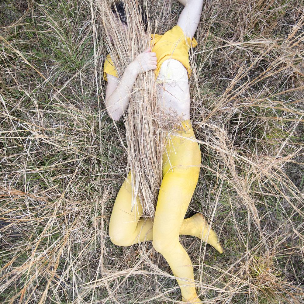 Golden Plumeria