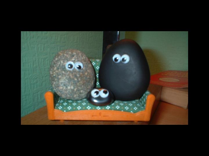 A happy family of pet rocks