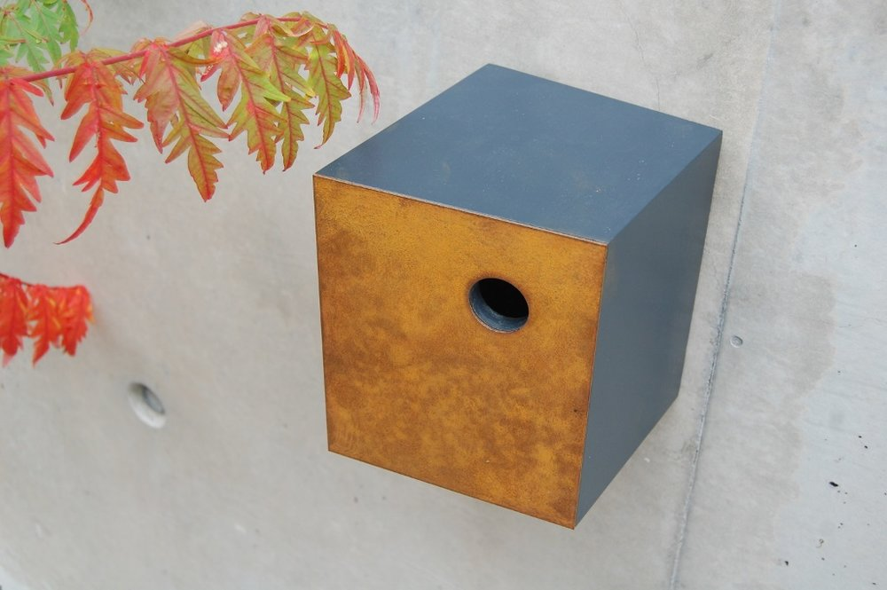 John Hollington Nestbox.jpg