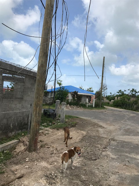 Hurricane-Irma-Slideshow-8.jpg
