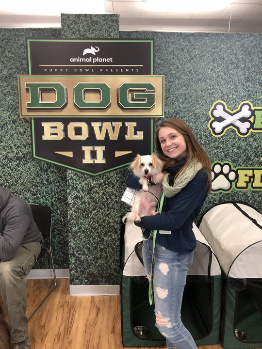 1Love4DogBowl-2019.jpg