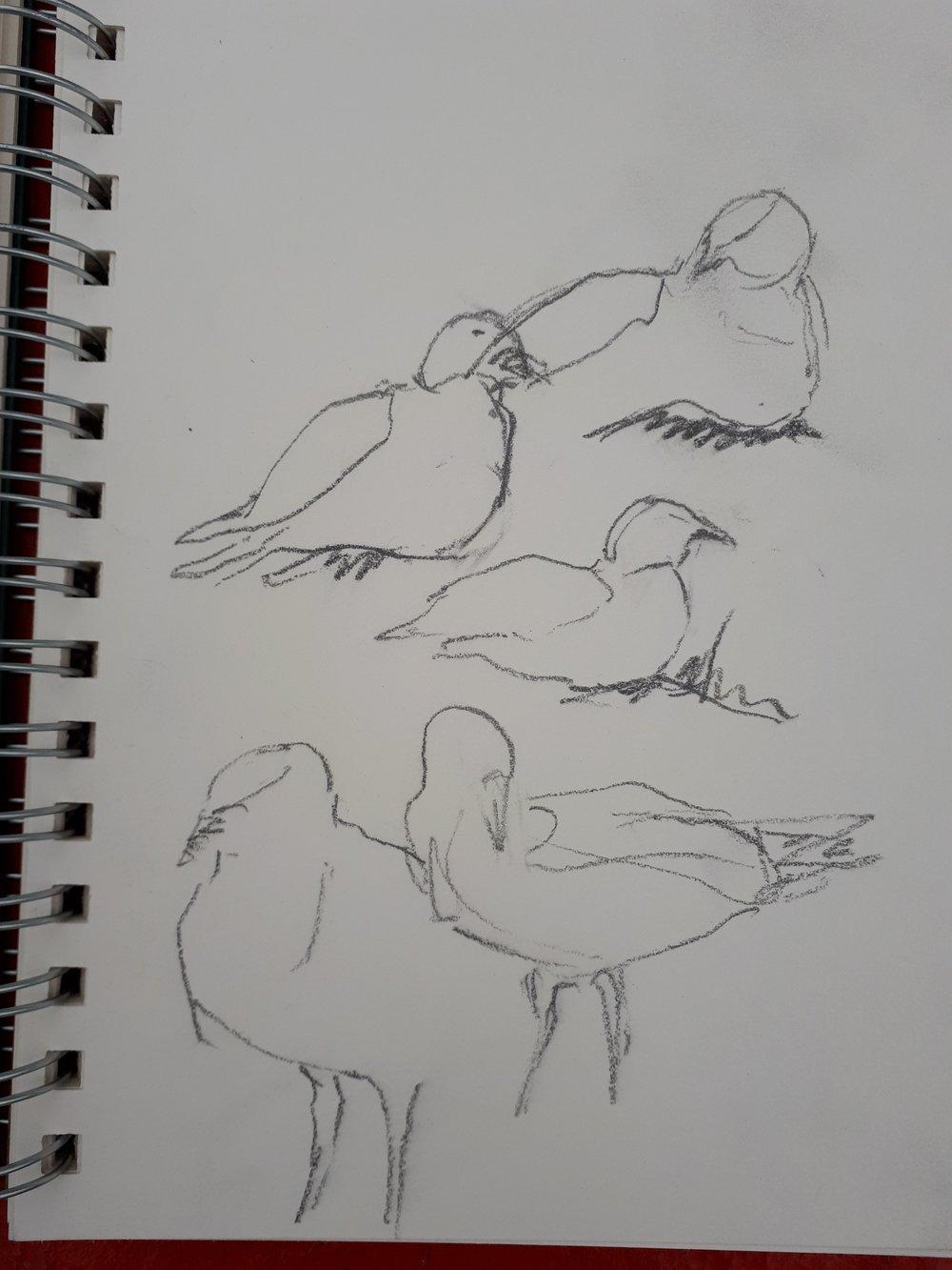 Sketches by Kaija Savinainen Mountain