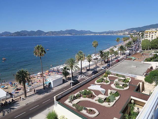 🌴C A N N E S🌴 I'm in love! #Vacances #Travel #Cannes #France