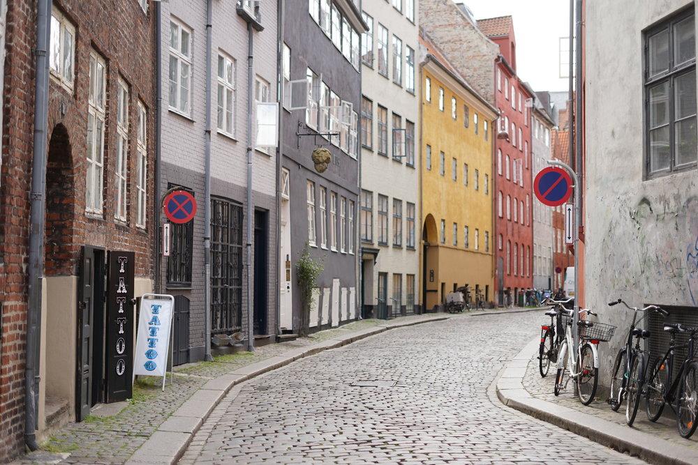 CopenhagenHeroShot.JPG
