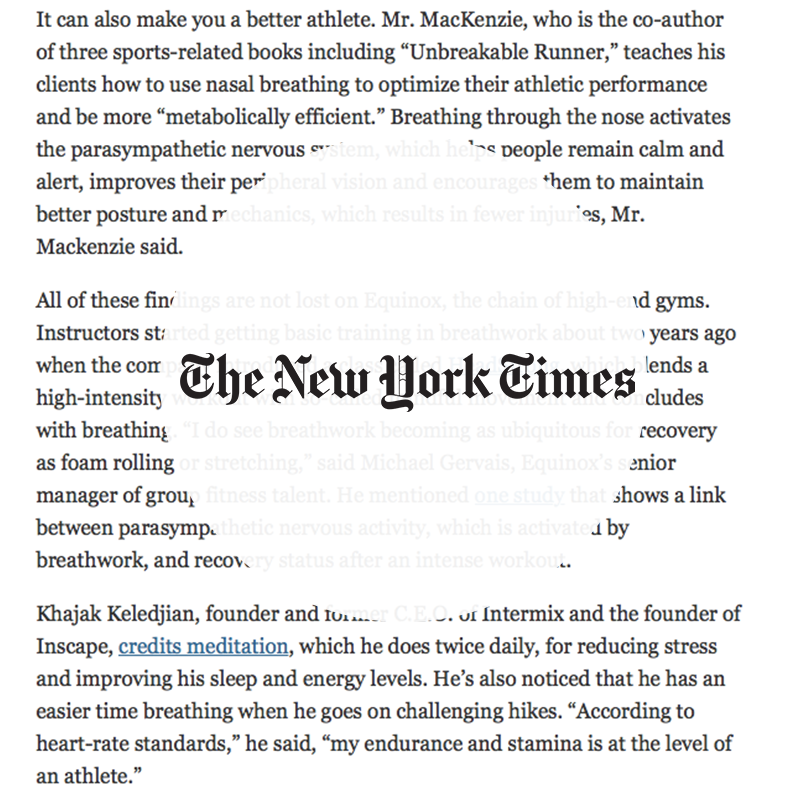 nytimes2.png
