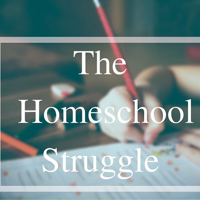 As a homeschool mom in my 2nd year, I've experienced many struggles. However, God has provided a grace in homeschooling and comfort to know we aren't perfect and he will equip us. Homeschooling is about patience and controlling your anger....this blog post helps provide comfort and encouragement for all homeschool parents. #homeschoolingishardbutworthit #homeschoolyear2 #Godwillequip #thedarlinduo #thehomeschoolstruggle