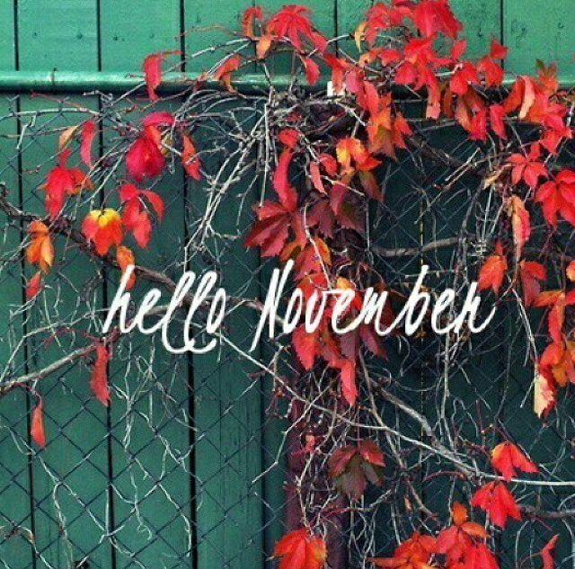 138709-Hello-November.jpg