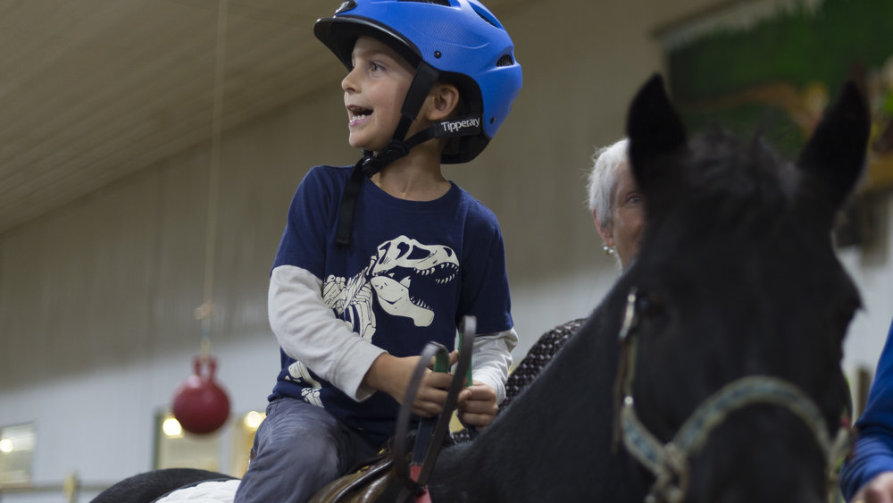 "Our Impact - Each year, Equestrian Connection therapy services positively impact the lives of thousands of mentally, emotionally and physically challenged children and adults! Their ""Best Days Happen Here"" -at our 26,000 square-foot, warm and loving Lake Forest, Illinois facility where Equestrian Connection clinically-licensed occupational and physical therapists, social workers, clinical psychologists, and a professional staff of instructors excel."