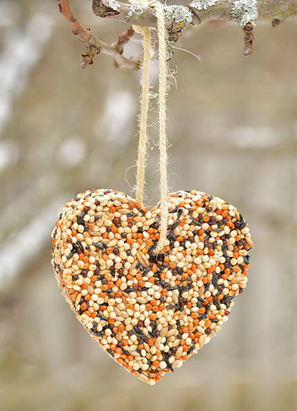 Birdseed-Ornaments_ELEVATEYouth.jpg