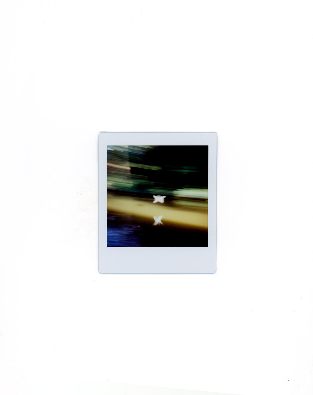 polaroids-14.jpg