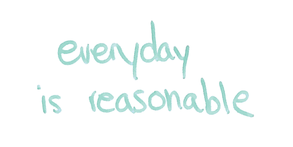 2 everyday is reasonable.png