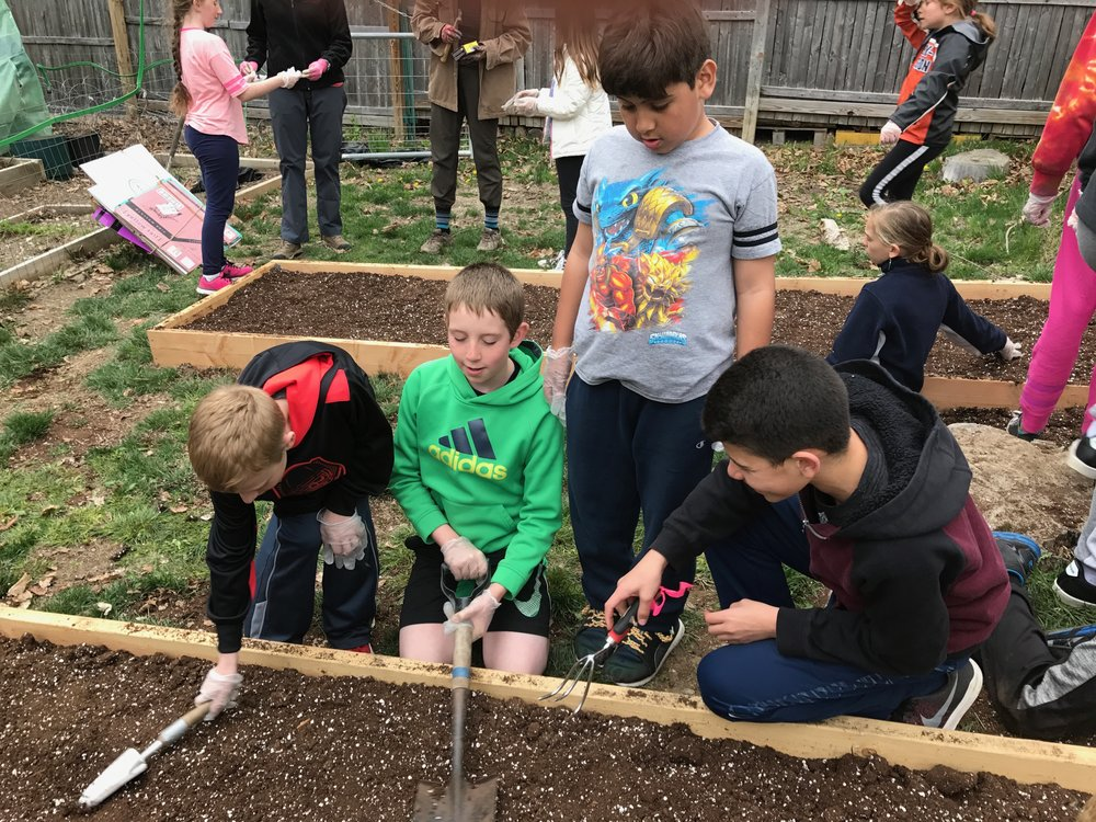 Gardening at our Camp After School Program.