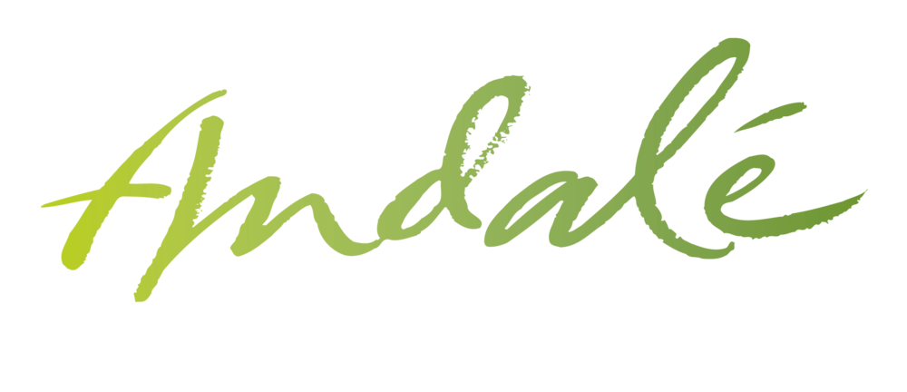 Andalé Mexican Family Kitchen