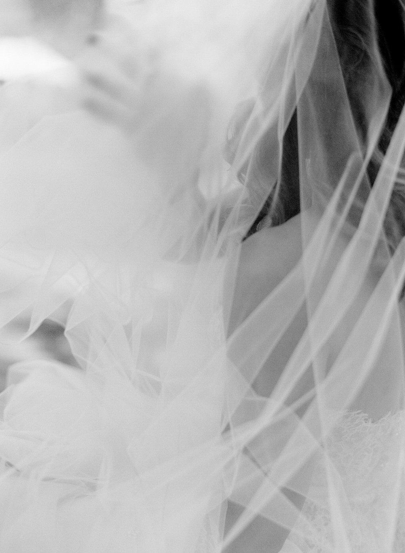 Amanda Nippoldt Photography