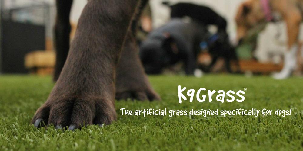 K9Grass-Banner.png