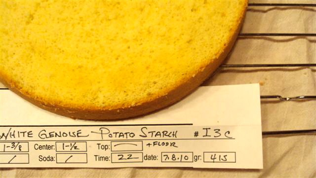 I3 C 5 Potatostarch close up top 7 8 10.jpg