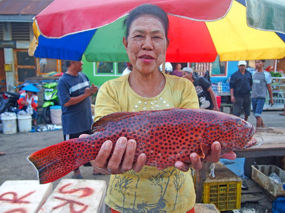 4507_Fish Forever_Indonesia_4507_Fish Forever_Indonesia_P1012481 (1).jpg