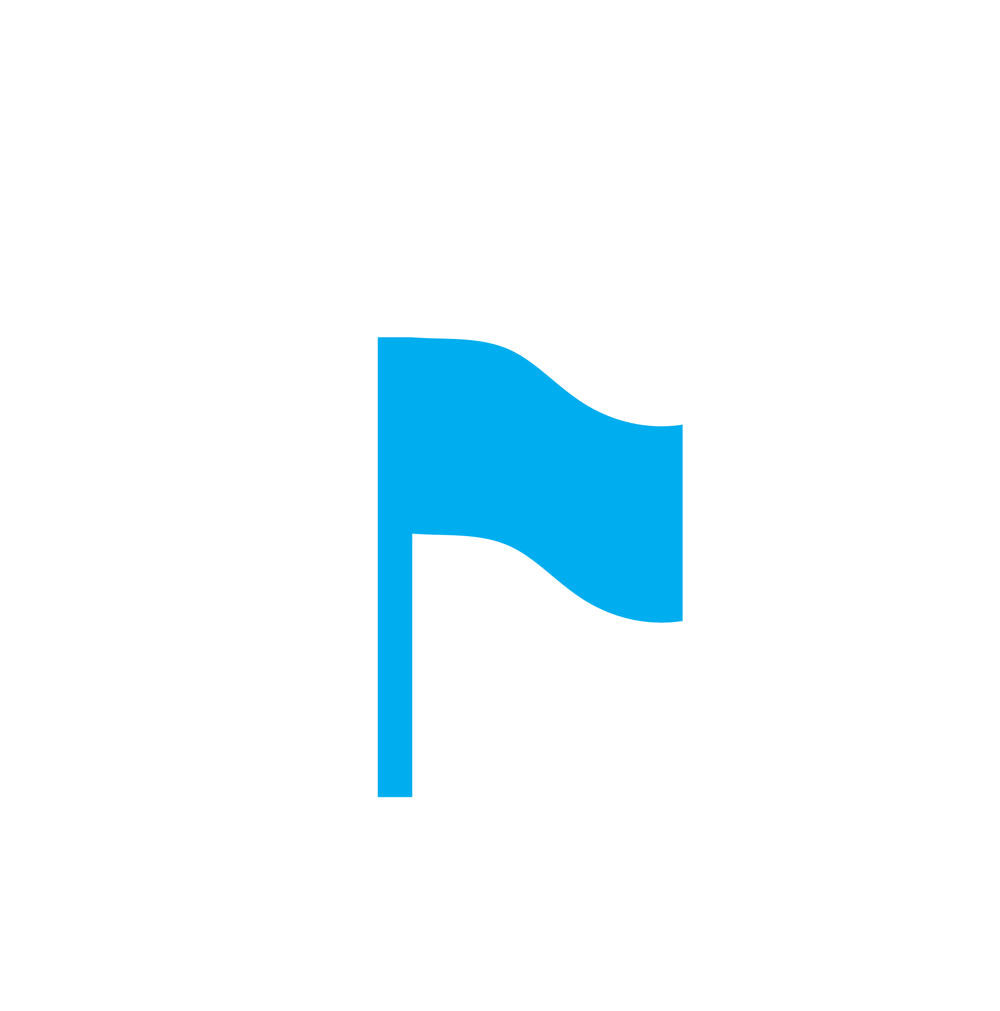 Flag Icon-01.png