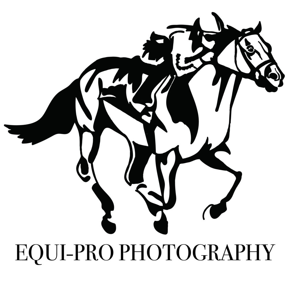 Equine Photography Logo