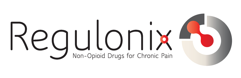 regulonix-logo.png