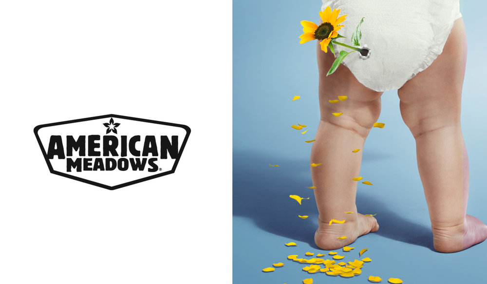 AmericanMeadows_half.jpg