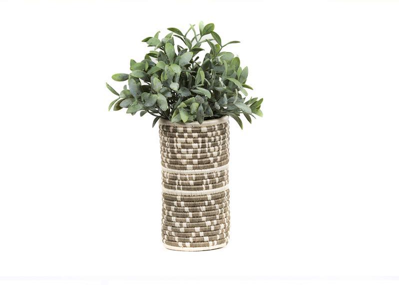 CV.10030_5x7.300dpi.plants_800x.jpg
