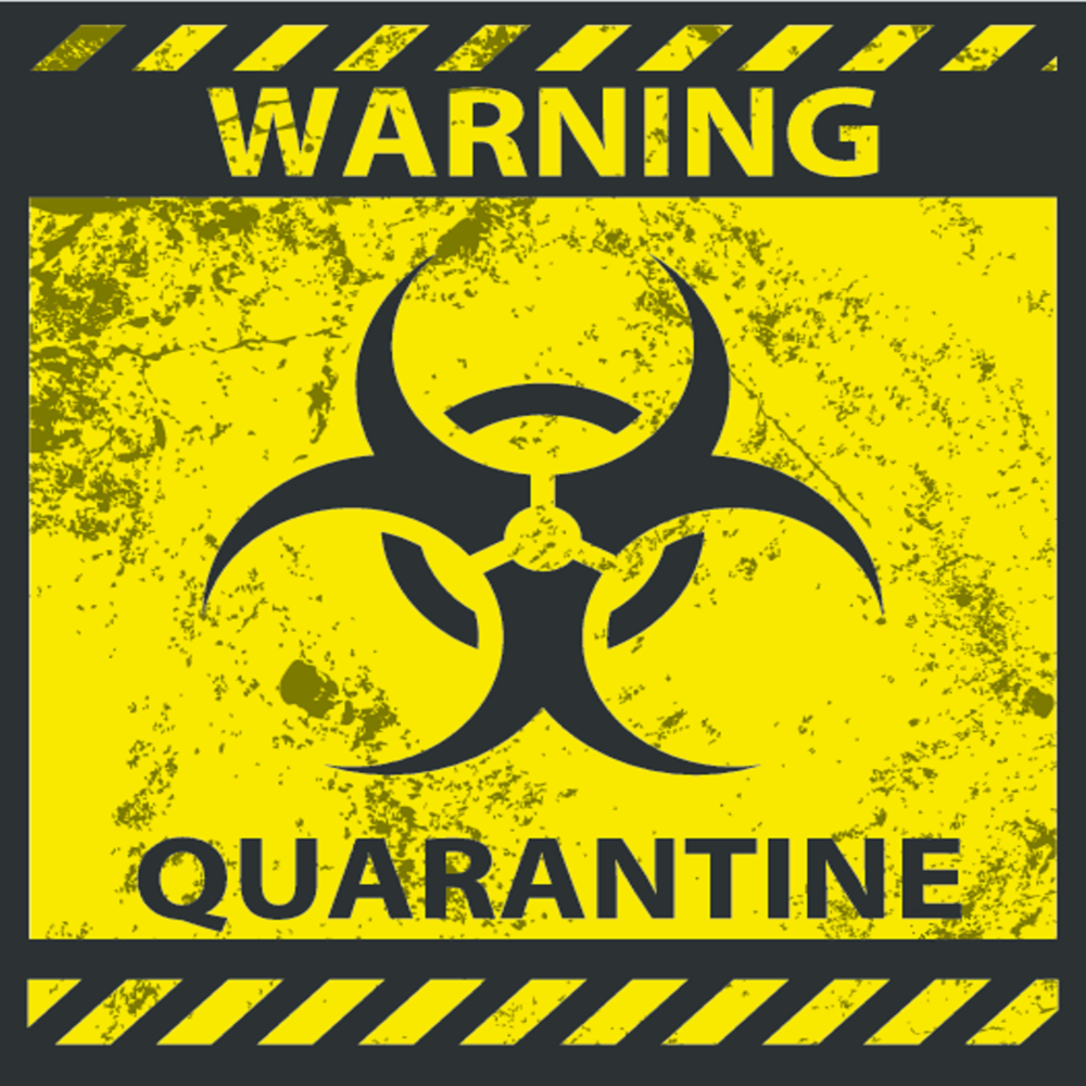 Escape room sales quarantineg biocorpaavc Image collections