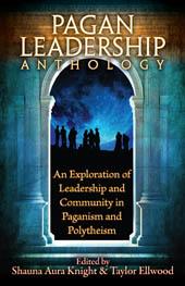 book_paganleadership_small.jpg