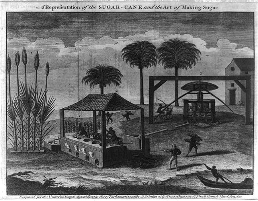 A representation of the sugar-cane and the art of making sugar, 1749. Hand colored engraving. Library of Congress Prints and Photographs Division