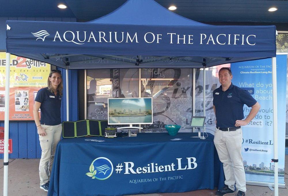 Aquarium. Resilient LB.jpg