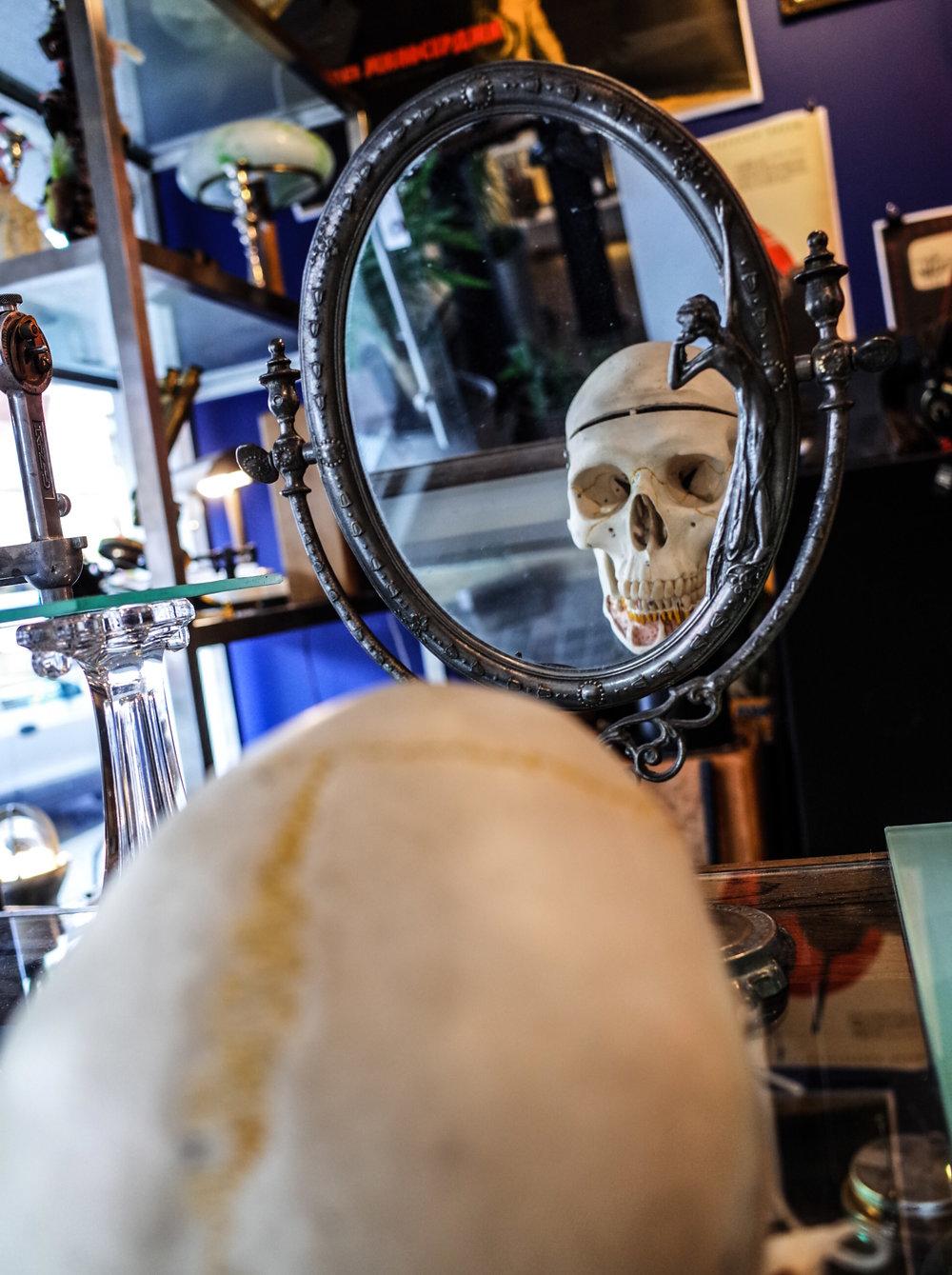 human-skull.jpg