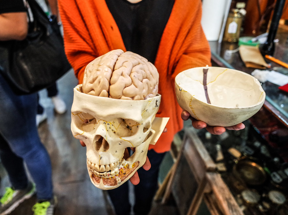 skull-brain-sculpture.jpg