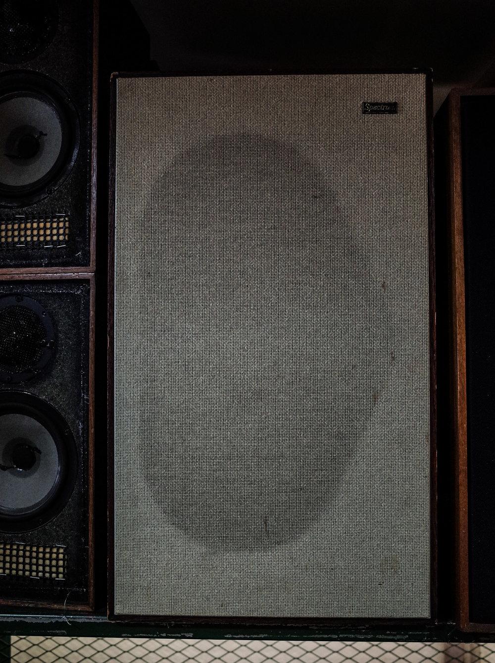 spectrum-speaker.jpg