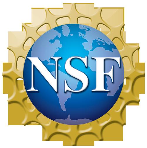 NSF-logo-500x500.png