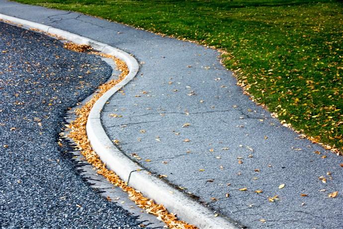 01-Autumn Debris.jpg