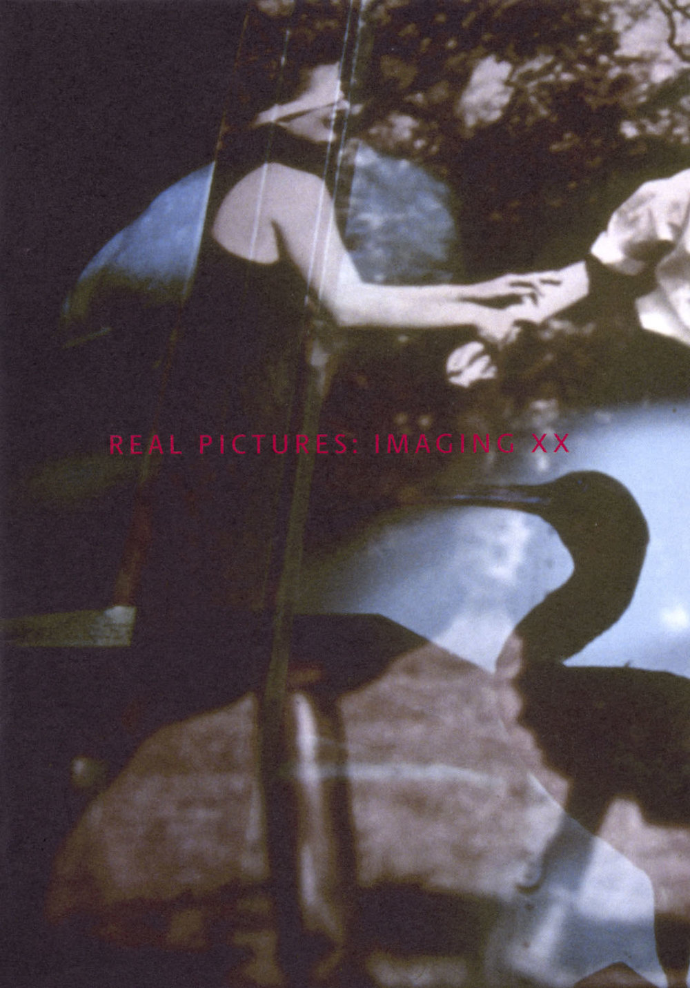 Cover of  Real Pictures: Imaging XX , published by PhotoForum as PhotoForum #88, 2017.